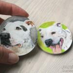 magnes z psem